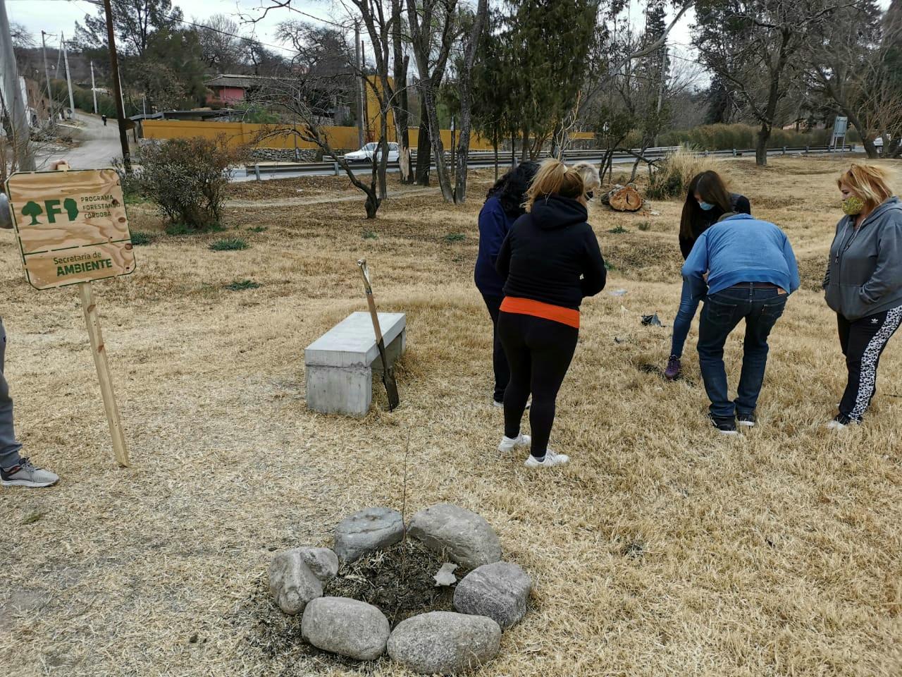 MENDIOLAZA: CAMPAÑA DE FORESTACIÓN – UN ÁRBOL, UN AMIGO –