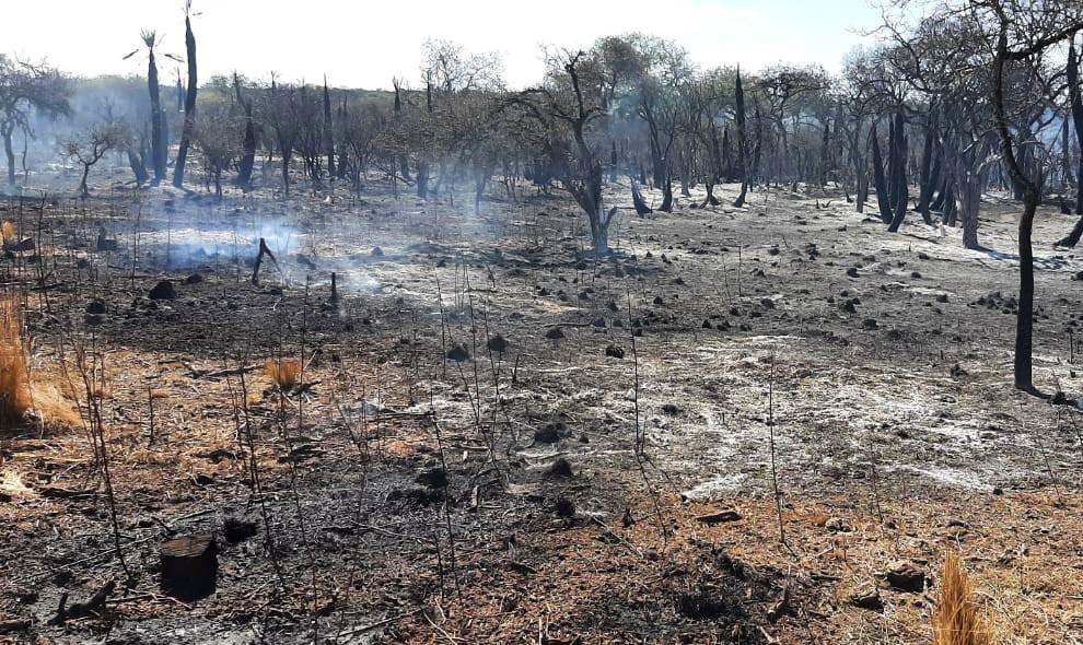 Continúa el combate a las llamas en el norte y el oeste provincial